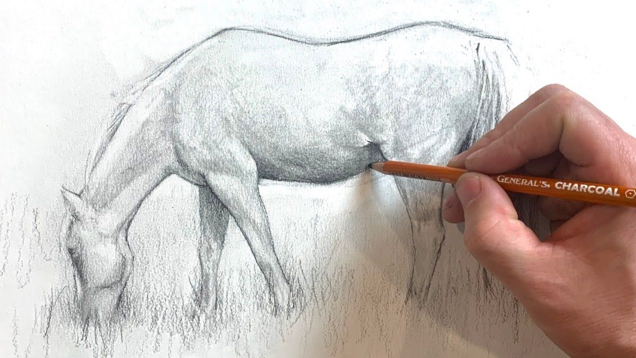 Hi, Horse! Drawing a Horse YouTube in 2020 Drawing