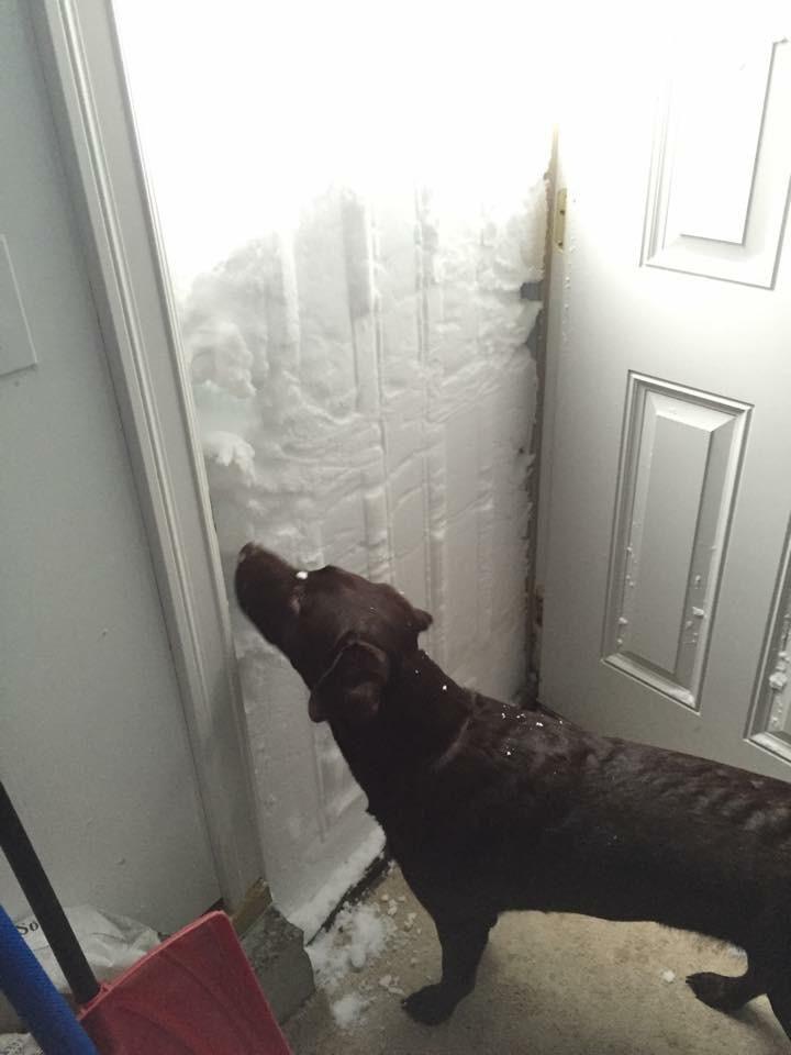James Spann On Twitter Buffalo New York Snow Storm Buffalo Pictures