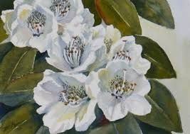 white flowers paintings