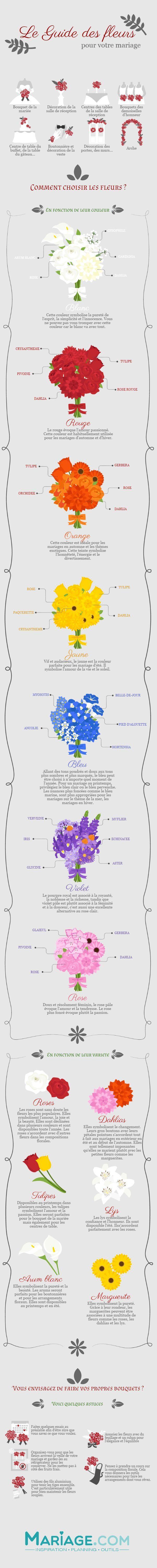 Entdecken Sie die Infografik, um auf den Blumen in Ihrer Nähe unschlagbar zu se