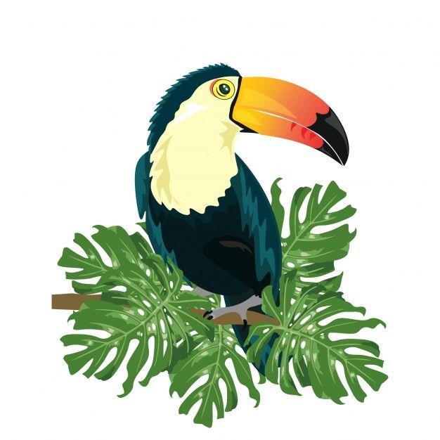 Download Coloured Toucan Design For Free Bird Prints Toucans Tropical Birds