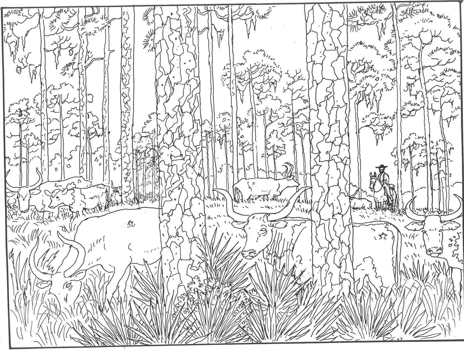 Forest Woods Coloring Page For Printer Friendly Versions