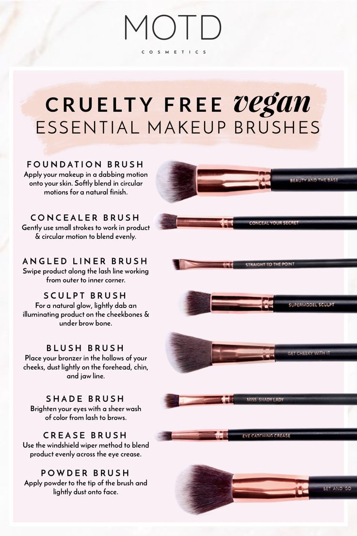 Makeup Brush Guide for Beginners Essential Tools You Need