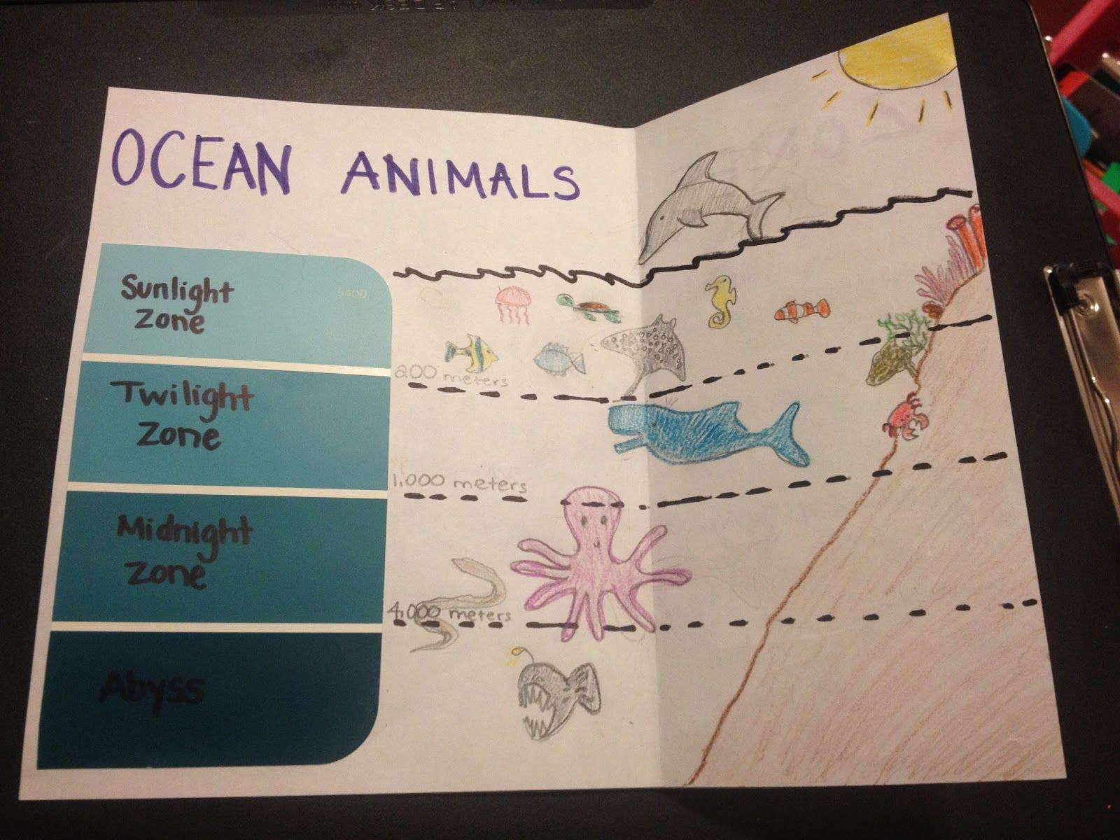 Ocean Zones Coloring Page I started ocean week with some | Ocean\'s ...