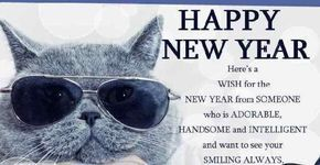 Funny happy new year message 2018 happy new year greetings message funny happy new year message 2018 happy new year greetings message funny happy new year message 2018 happy new year greetings message funny happy new year m4hsunfo