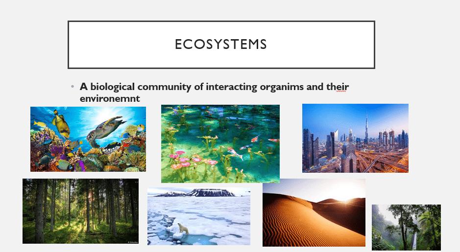 الأحياء بوربوينت Ecosystems بالإنجليزي للصف التاسع Ecosystems Community