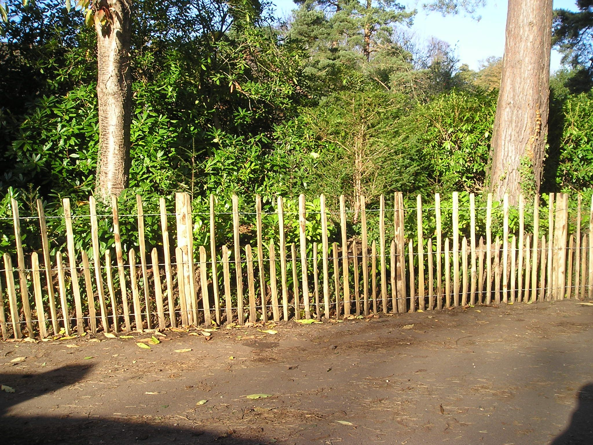 Some Quot Up And Down Quot Chestnut Fencing Or Quot Castellated