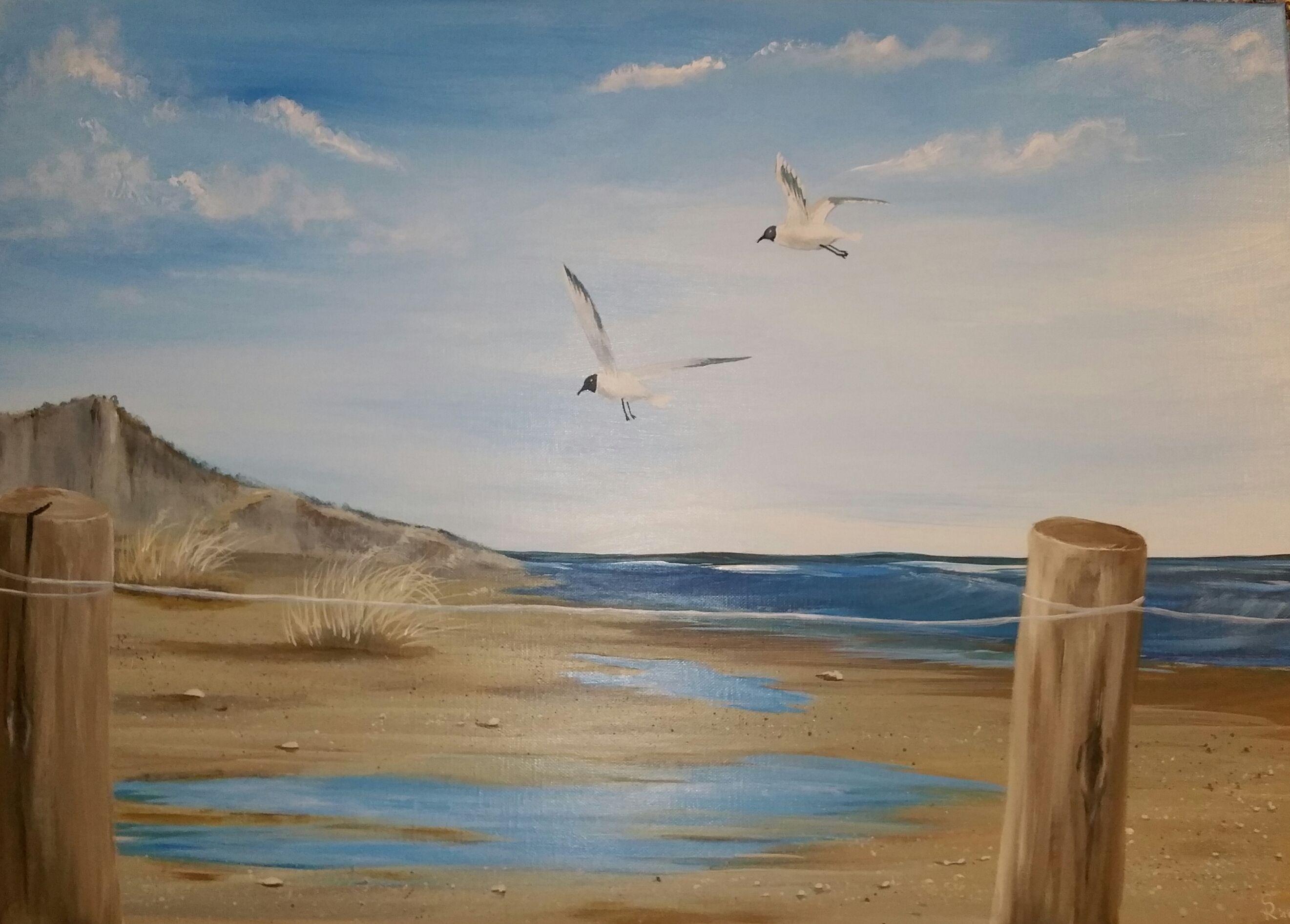 Acrylmalerei Auf Leinwand Strand Vogel Das Meer Acryl Kunstproduktion Acrylmalerei