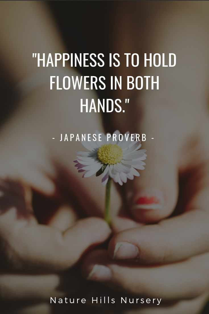 happiness is to hold flowers in both hands proverb gardening
