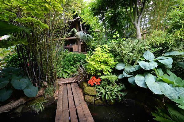 Garden Design Tropical black bamboo, ferns and hostas at this tropical garden design in