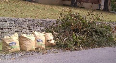 Donelson brush deposit free of charge (Elm Hill Pike)