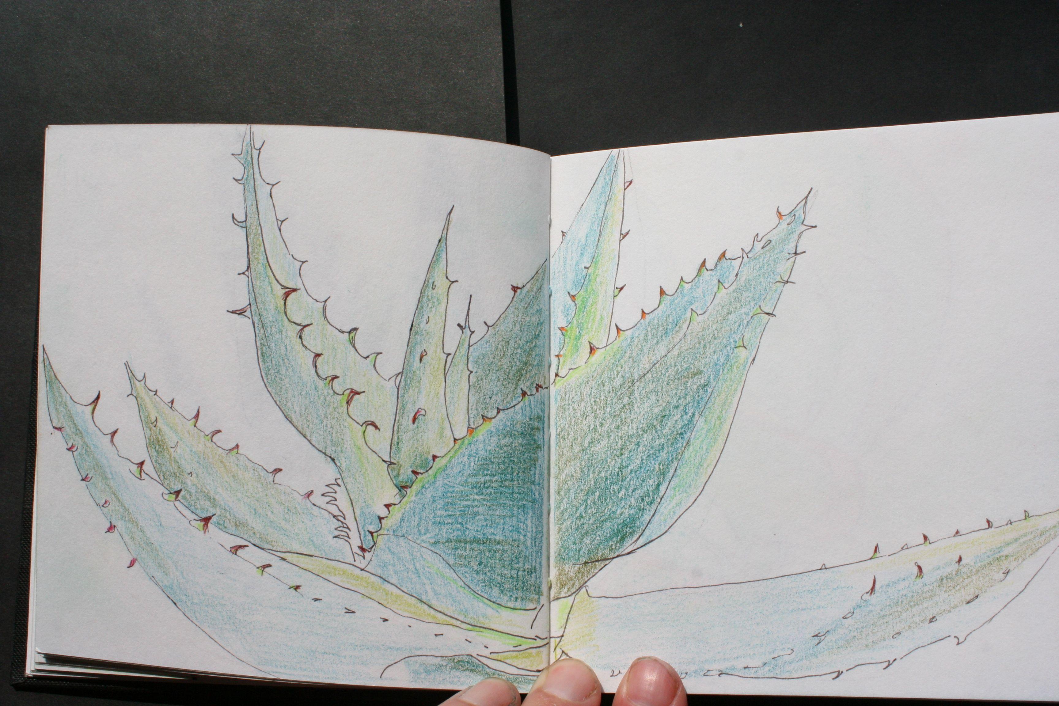 Themaboek Florilegium Ins Design Trudy Beekman