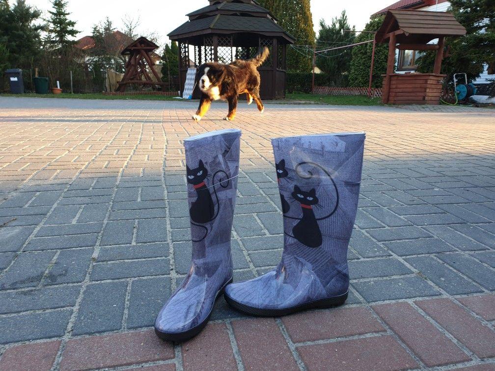 Hawai Lady Kalosze Damskie Koty Boots Ugg Boots Uggs