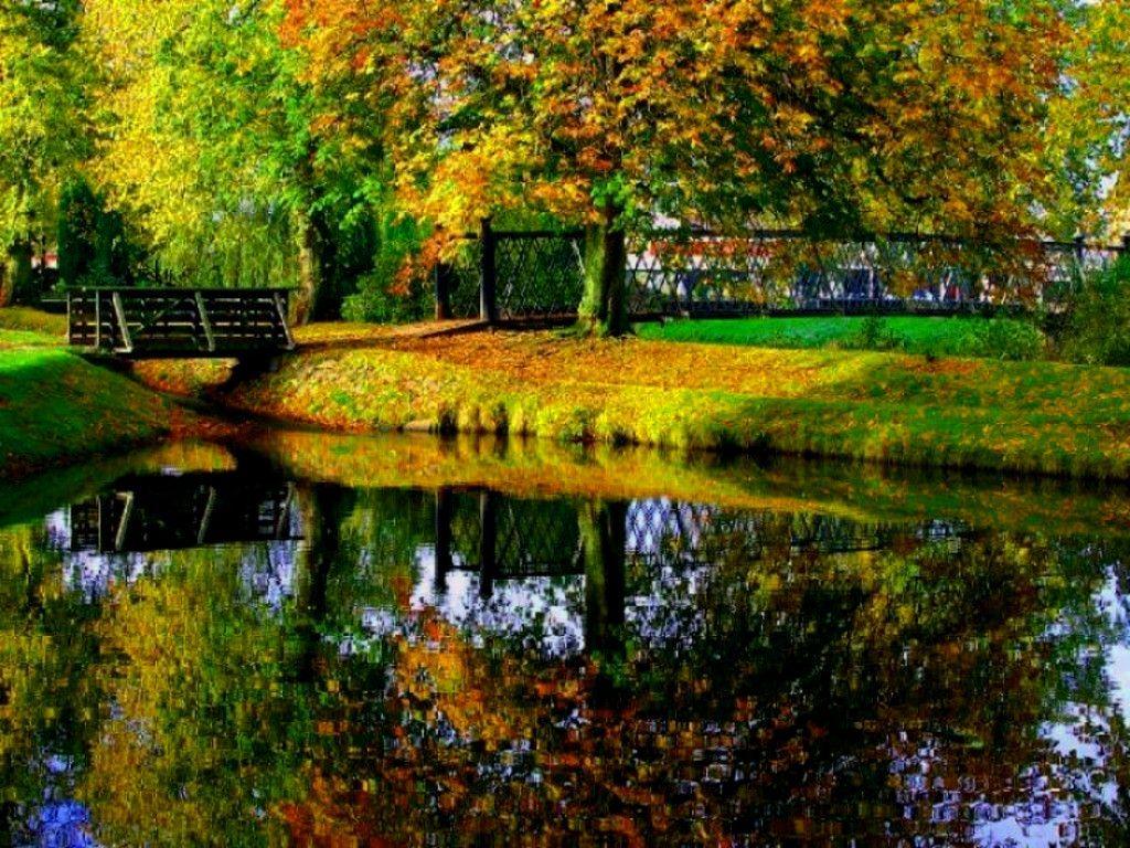 Autumn Desktop Wallpaper Hd Http Hdwallpaper Info Autumn Desktop Wallpaper Hd Hd Wallpa Desktop Wallpaper Fall Scenery Wallpaper Fall Desktop Backgrounds