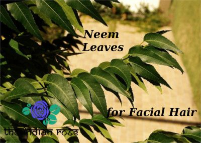 NEEM FOR FACIAL HAIR RECIPE | Beauty | Hair growth home remedies