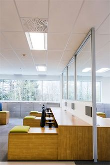 office natural light. topring: open office space with glass divider allows natural light throughout the space. take