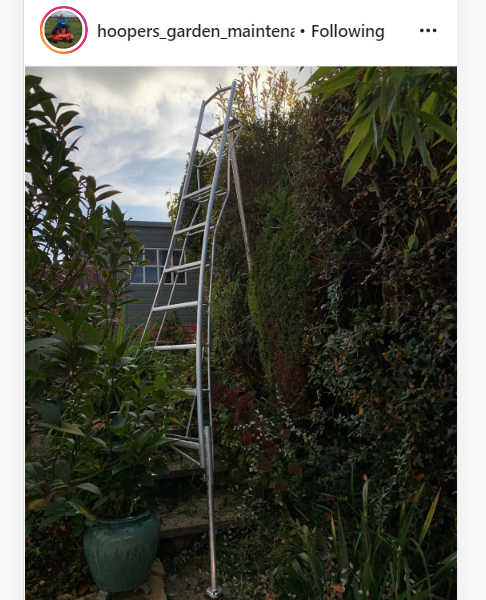 Our Most Popular 10 Ft 3 Leg Adjustable Tripod Platform Ladder In Action Making It Easier To Get To Awkward Hedging Up Stairs Safely And In 2020 With Images Platform Ladder Hedges