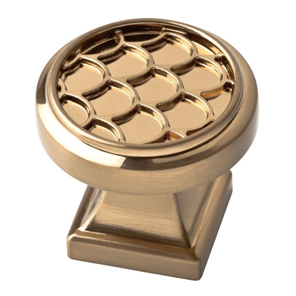 liberty 1 1 4 in champagne bronze scalloped cabinet knob hardware
