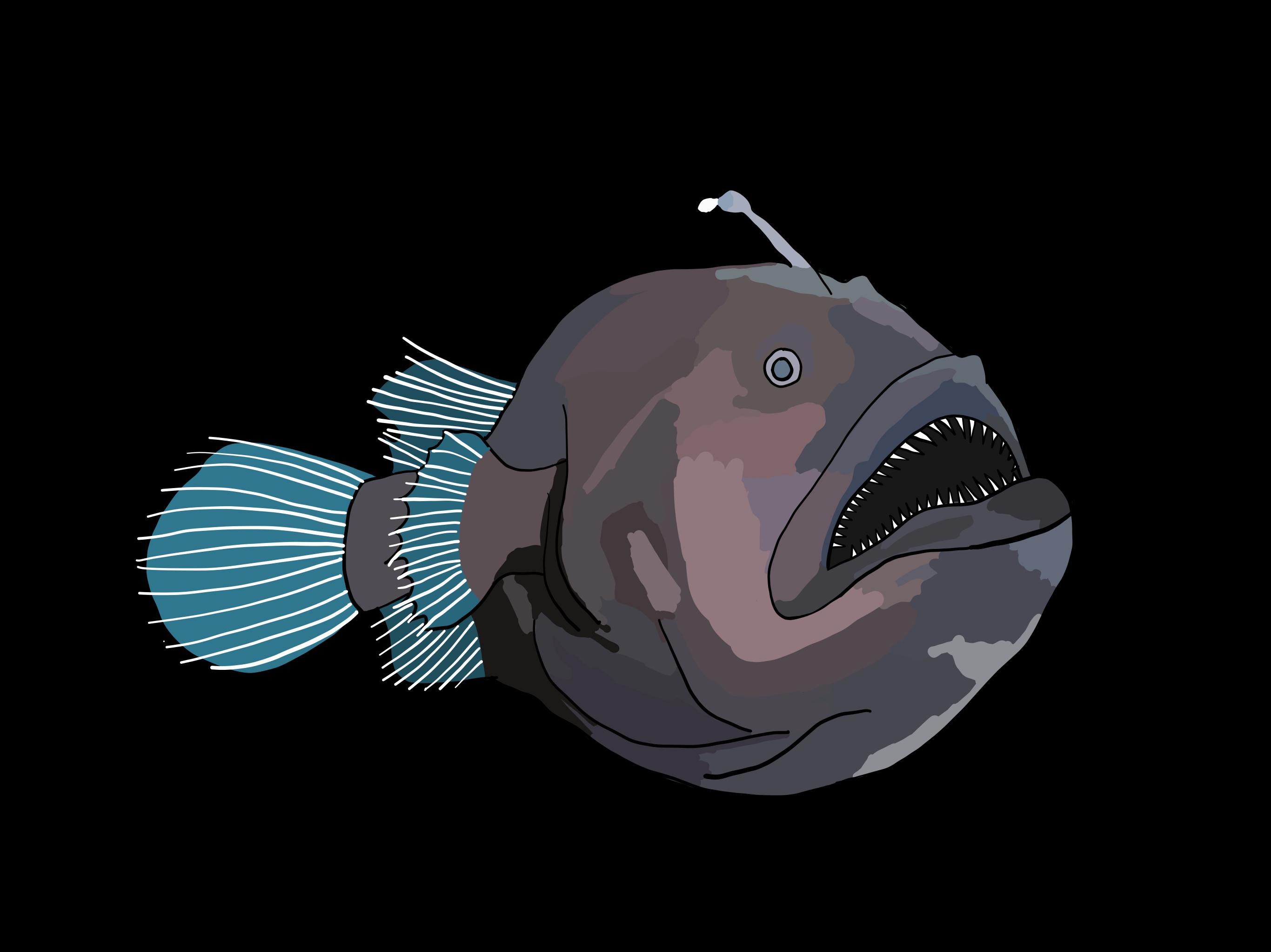 Angler Fish on Black Photo Block   Digital painting sea animals ... for Angler Fish Png  177nar