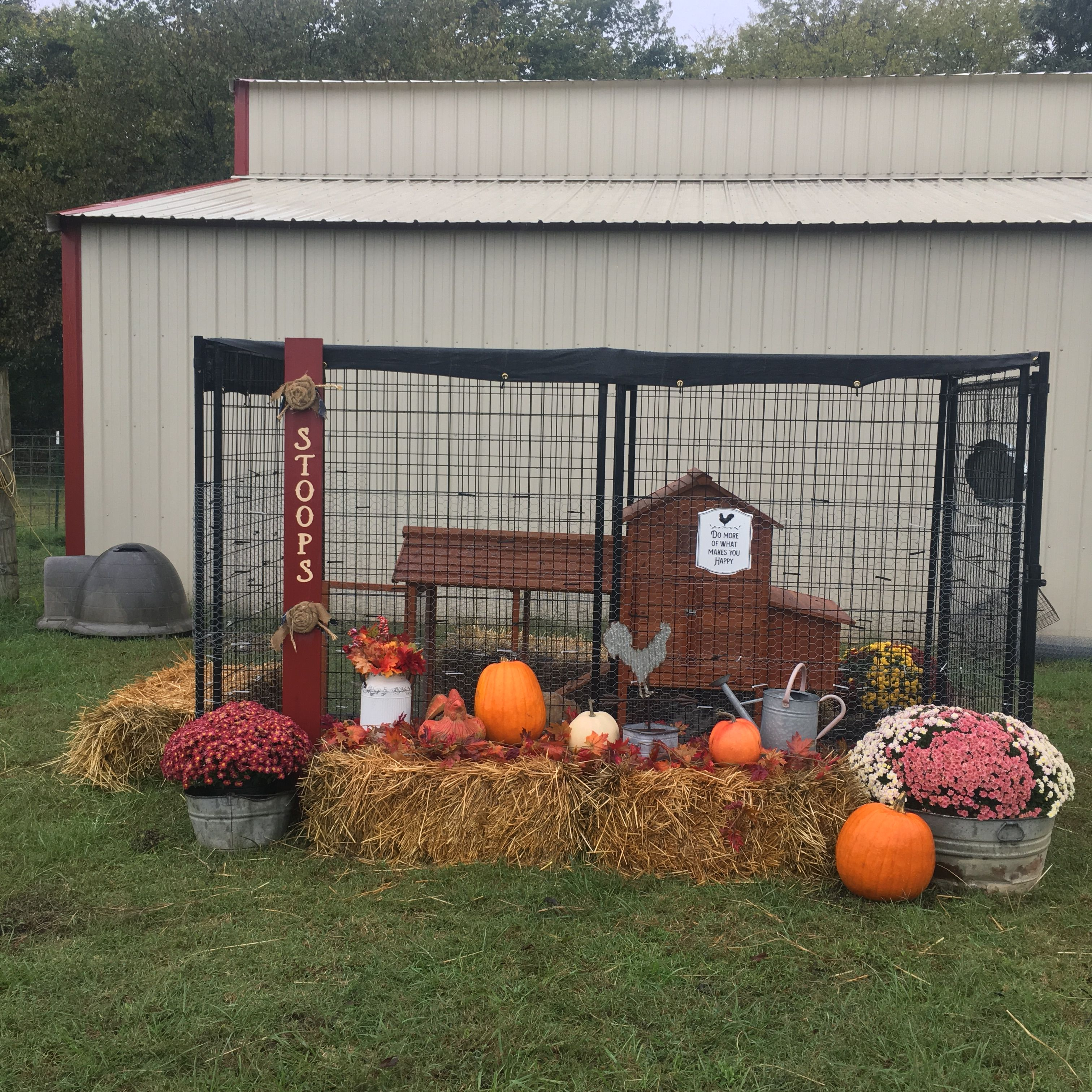 My Chicken Coop Decorated For Fall