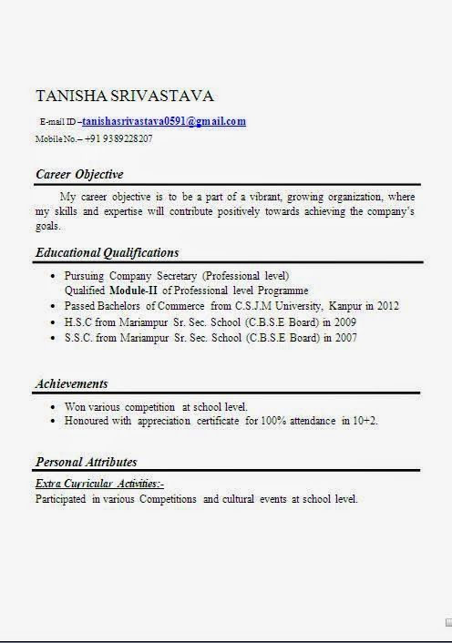 auditor resume sample sample template example ofexcellent curriculum