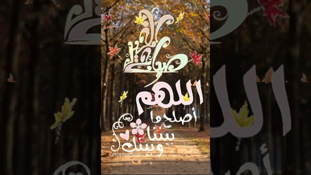 صباح الخير دقيقة مع القرآن الكريم تلاوة القارئ الشيخ عبدالله الموسى حفظ Book Cover Art Cover