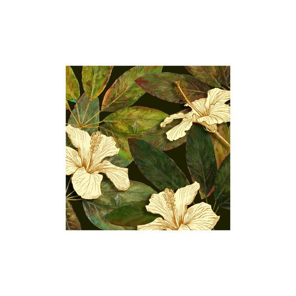 Hibiscus Leaves I Giclee Print Wall Art (€35) ❤ liked on Polyvore ...