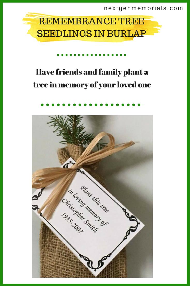 Remembrance Tree Seedlings in Burlap | Tree seedlings and Burlap