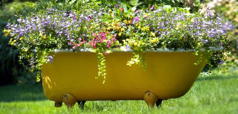 Creative Container Gardening Gardens Container gardening and