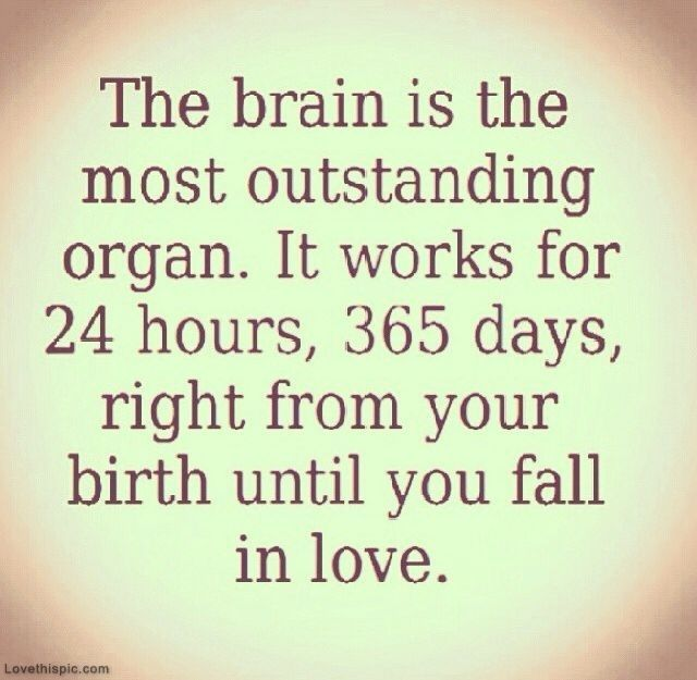 The Brain Love Days In Love Fall Brain Instagram Birth Life Quotes Love  Quotes Funny Quotes