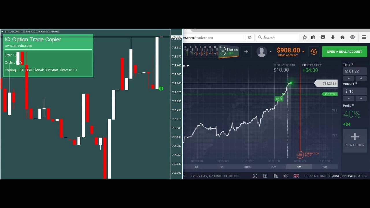 Metatrader Iq Option Trade Copier Plugin Option Trading