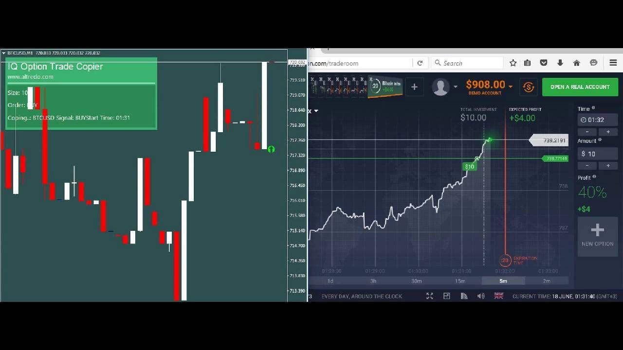 Best Fx Trading Signal Copier