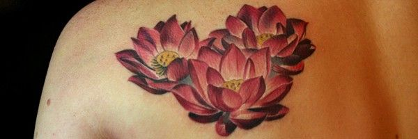 Tatouage Fleur De Lotus 39 Dessins De La Plante Aquatique