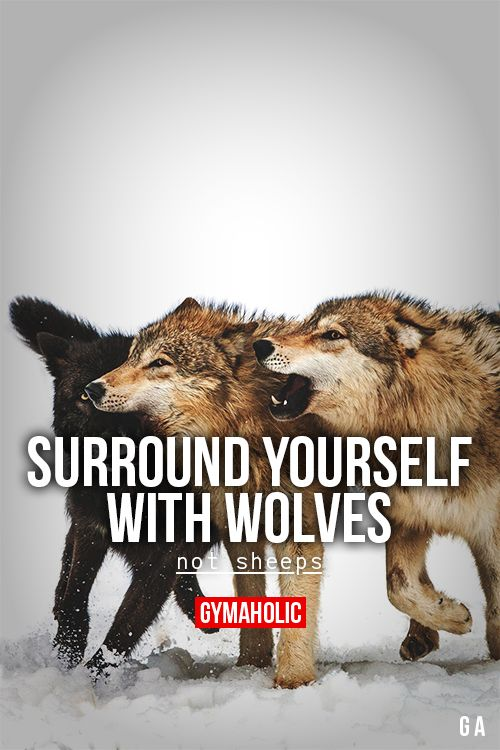Surround Yourself With Wolves | Inspirational Quotes