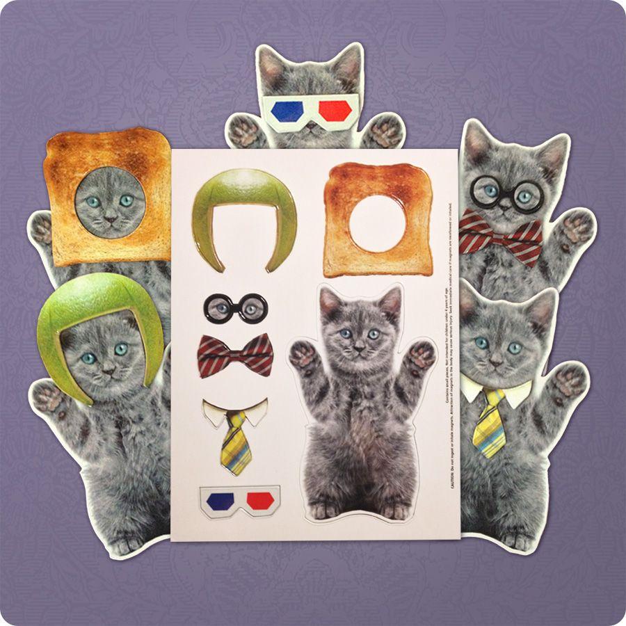Funny kitten magnet on the fridge