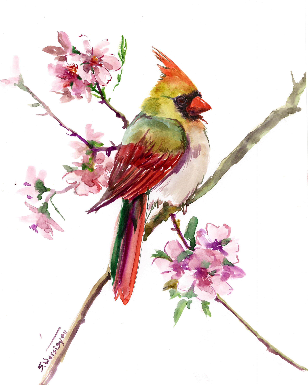 Bird Artwork Female Cardinal Bird Art, Original one of a kind ...