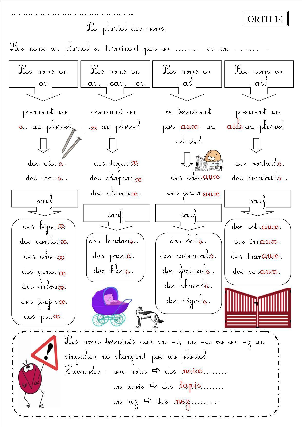 ORTH 14 CE2 : le pluriel des noms - La classe des CE de Villebois | Pluriel des noms, Le pluriel ...