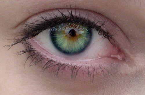 rarest eye color in humans owlcation