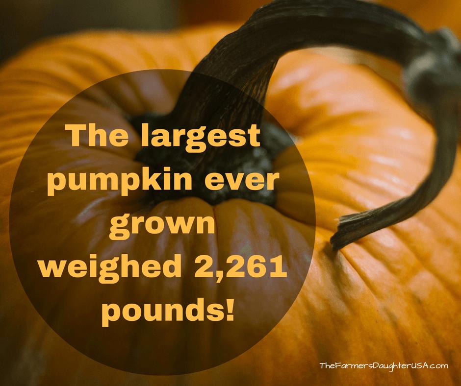 That's pretty big!