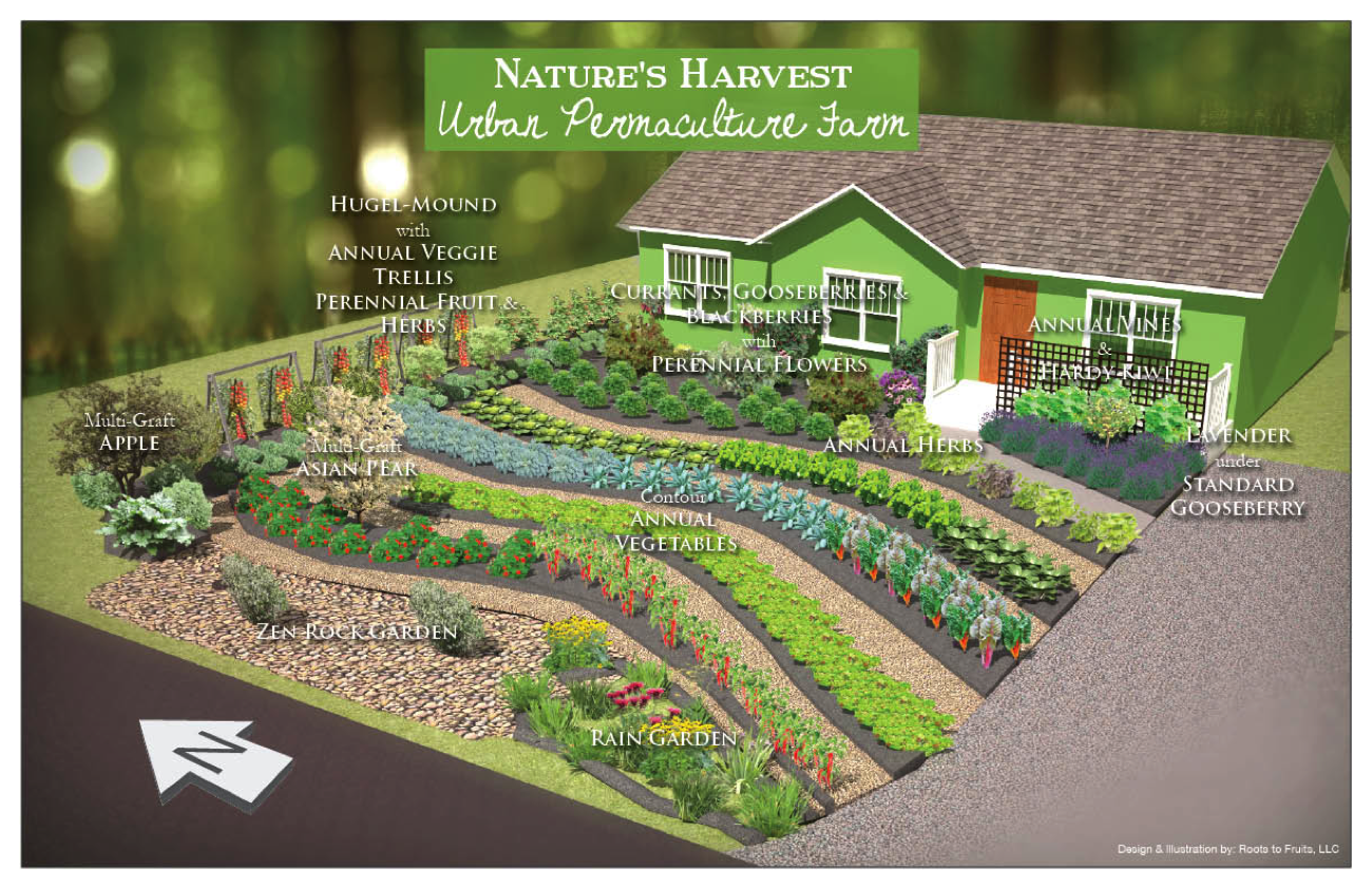 Shade Garden Ideas Layout Raised Beds