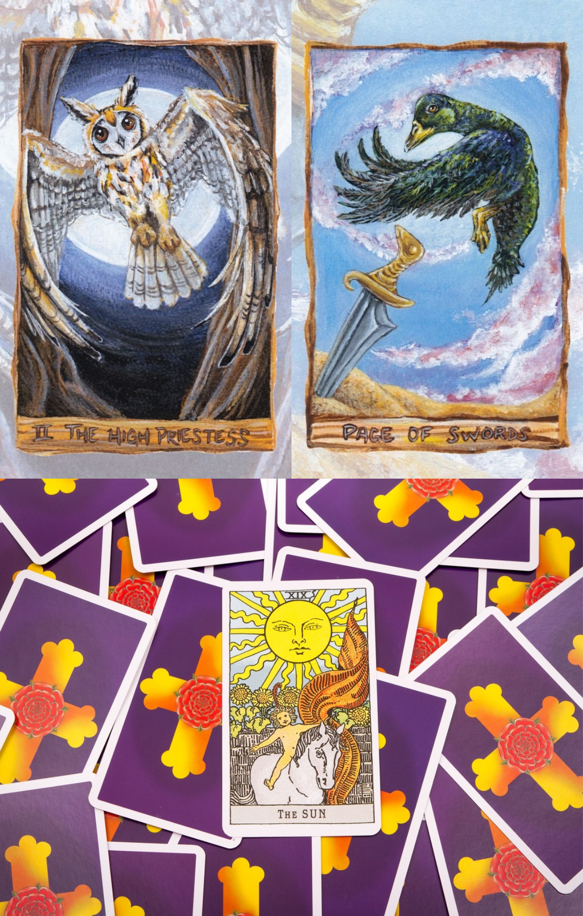 How To Read Tarot Cards Free Card Reading And Tarot Card Reading Love In Hindi Free Clairvoyant Re Reading Tarot Cards Free Card Reading Learning Tarot Cards