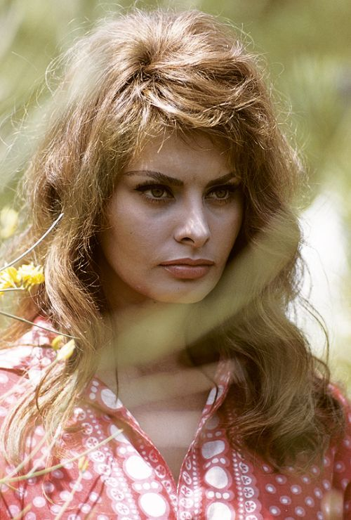 Here is a collection of stunning photos of young Sophia Loren in the 1950s and 1960s.