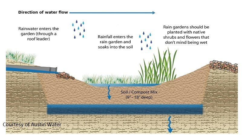 Rain Garden Diagram Central Texas Gardener And Austin