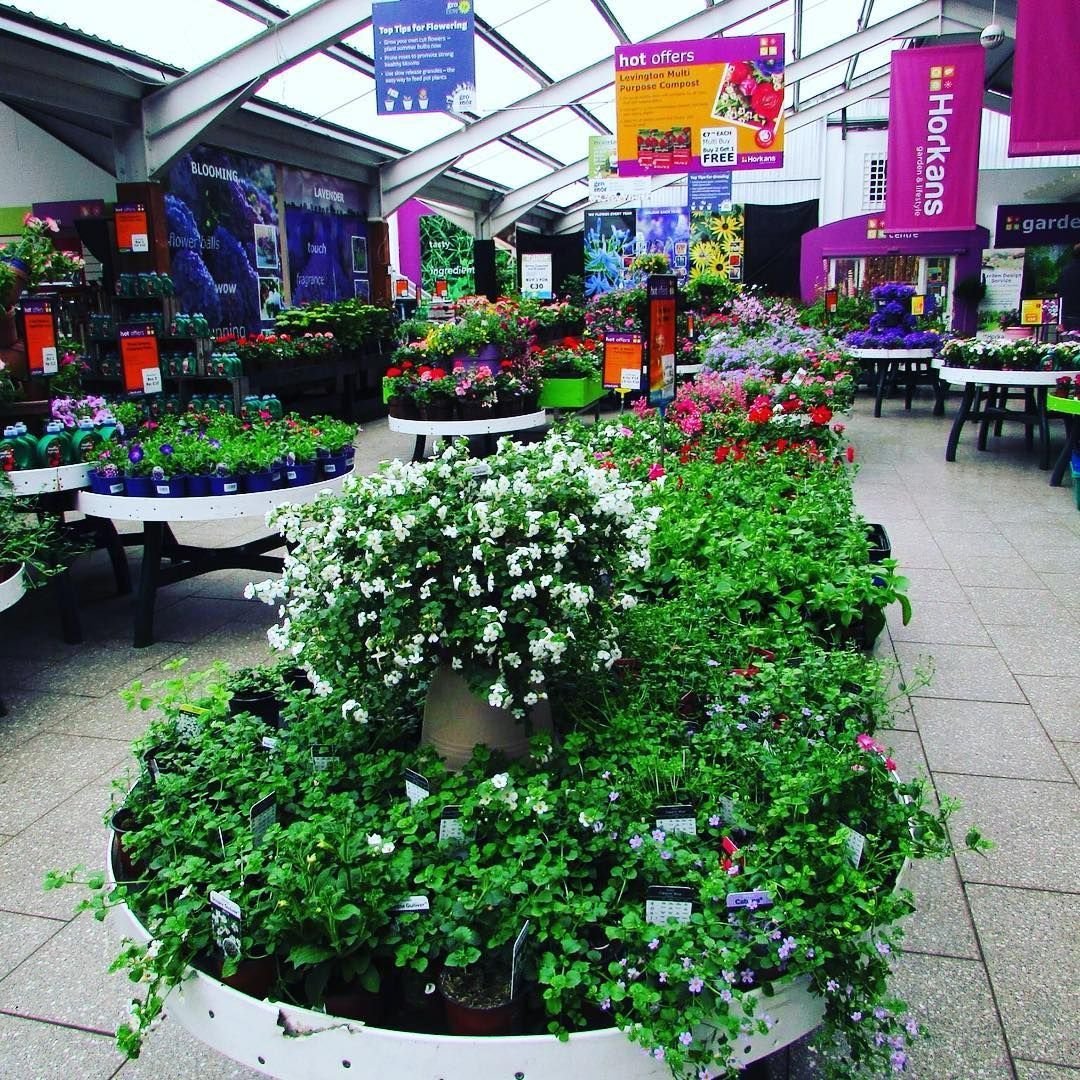 Instagram Photo By Horkans Garden Centre Jun 16 2016 At 7 50pm Utc