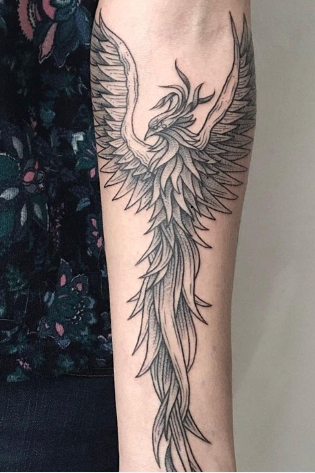 Pin De Diego En Tatuajes Tatuaje De Fenix Para Hombre Tatuajes
