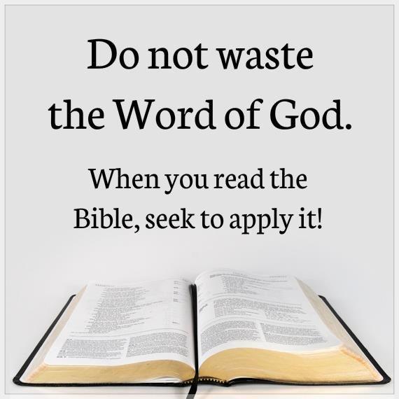 Read the Bible Online—Free Bible Downloads: MP3 Audio, PDF