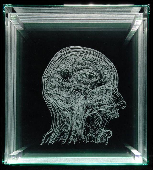 ANGELA PALMER_Layered MRI Self-Portraits Engraved in Glass Sheets