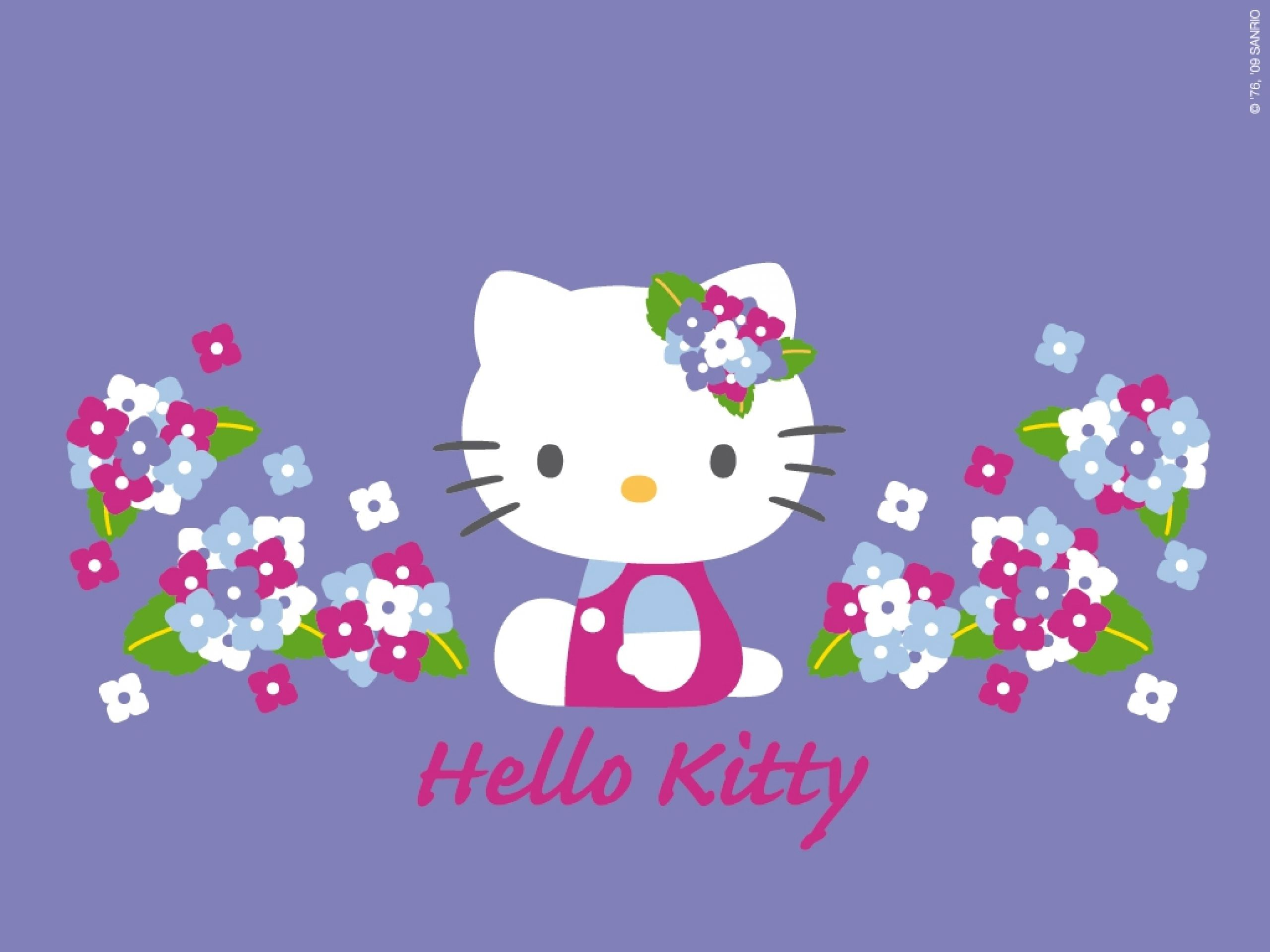 Looks - Kitty Hello zebra wallpaper video