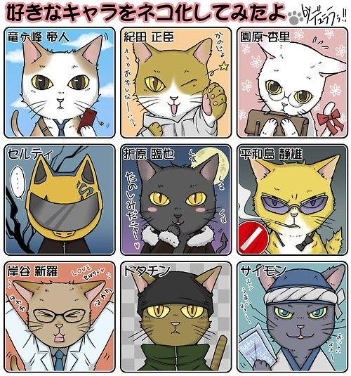 DRRR!! Cats