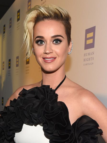 Singer Katy Perry attends the Human Rights Campaign 2017 Los Angeles Gala Dinner.